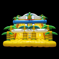 outdoor Inflatable Slide[GI142]