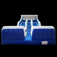 inflatable Screamer Slides[GI144]
