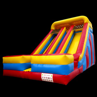 inflatable slideGI156