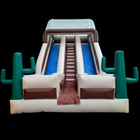 Cactus inflatable slideGI104