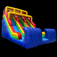 Commercial Inflatable SlidesGI096