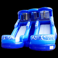 Blue Inflatable Double SlidesGI152