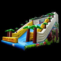 Jungle water slide jumper