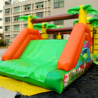 inflatable tiger Obstacle slidesGE143