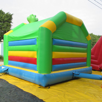 inflatable lizard bounceGB539