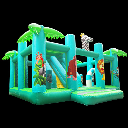 Inflatable Bouncer Adult Bounce House
