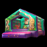 Moon Bounce For Sale