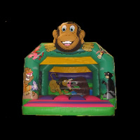 party inflatable bouncersGB286