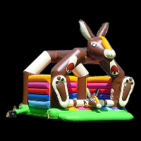 bouncy houseGB453