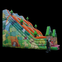 inflatable party slidesGI110
